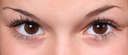 Brown healthy eyes