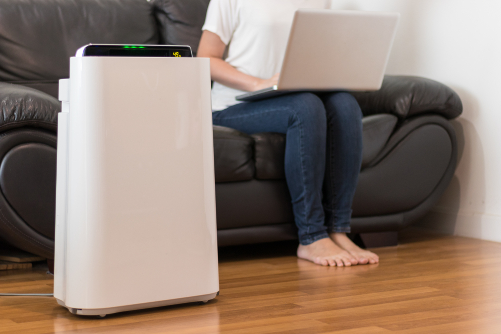 Air purifiers in the mome can help hay fever sufferers